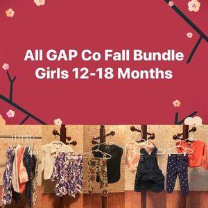 Girls All Gap Co Autumn 🍂 Bundle 12-18 months EUC